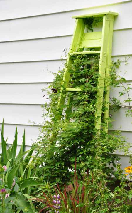 14-ways-to-repurpose-ladders-around-the-homestead