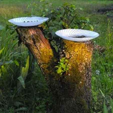 16-practical-ways-to-repurpose-tree-stumps