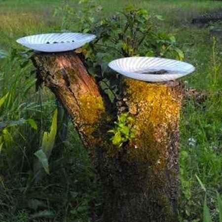16-practical-ways-to-repurpose-tree-stumps