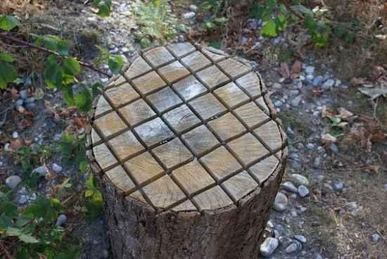 18-practical-ways-to-repurpose-tree-stumps