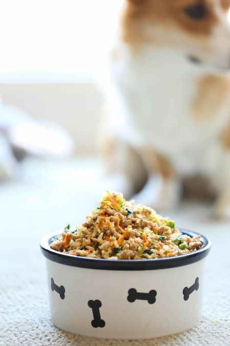 3-best-homemade-dog-food-and-treats-recipes
