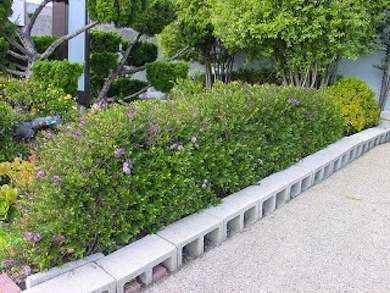5-gardening-bed-edging-ideas-that-are-easy-to-do