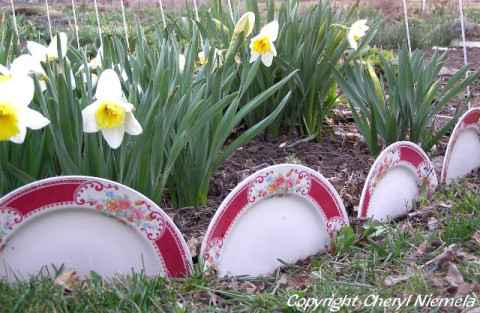 8-gardening-bed-edging-ideas-that-are-easy-to-do
