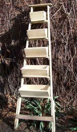 8-ways-to-repurpose-ladders-around-the-homestead