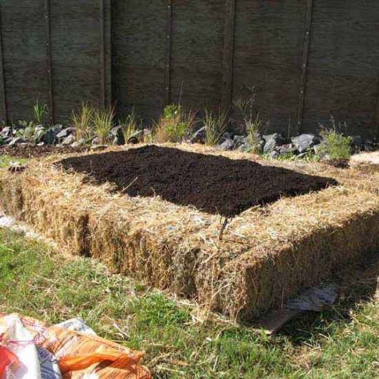 9-gardening-bed-edging-ideas-that-are-easy-to-do