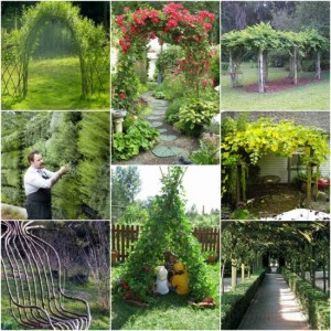 18 Amazing Living Structures To Add To Your Yard
