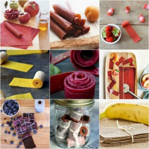 26 Best All-Natural Fruit Leather Recipes