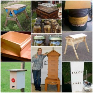 12 DIY Beehive Plans And Ideas For Sustainable Honey