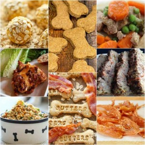 best-homemade-dog-food-and-treats-recipes