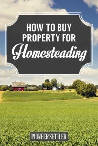 How To Buy Property For Homesteading