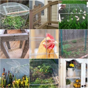 creative-wire-mesh-projects-for-the-home-and-garden