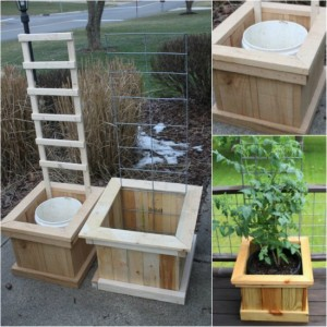 How To Build Garden Grow Boxes