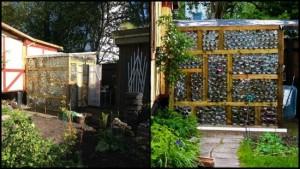glass-jar-greenhouse