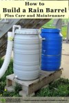 How To Build A Rain Barrel And Maintain It