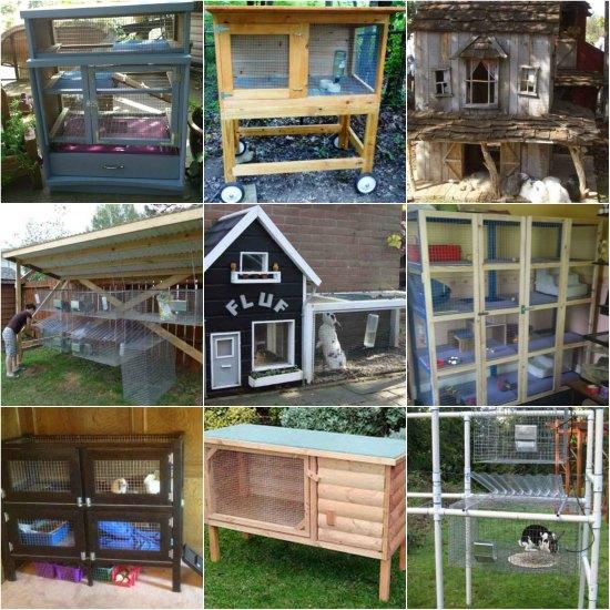 rabbit-hutch-ideas-and-designs-2