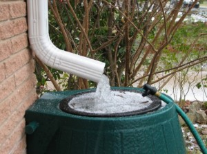 How To Catch, Filter, And Store Rainwater