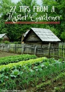 tips-from-a-master-gardener