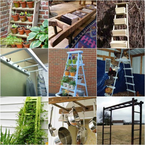 ways-to-repurpose-ladders-around-the-homestead