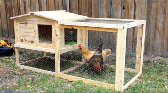 17-chicken-coop-designs-and-ideas