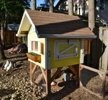 3-chicken-coop-designs-and-ideas