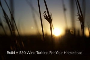Build A $30 Wind Turbine For Your Homestead