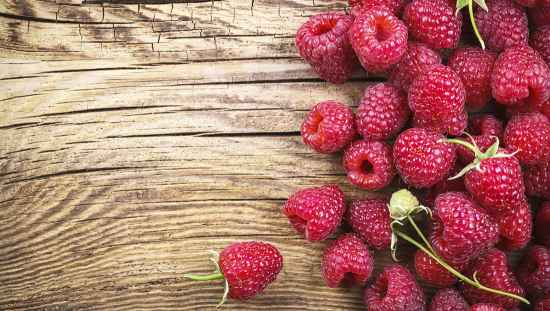 4-berry-bushes-to-grow-in-your-yard