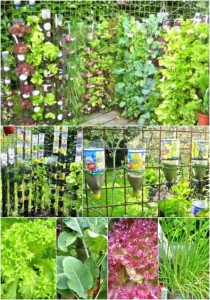 DIY Bottle Tower Gardens