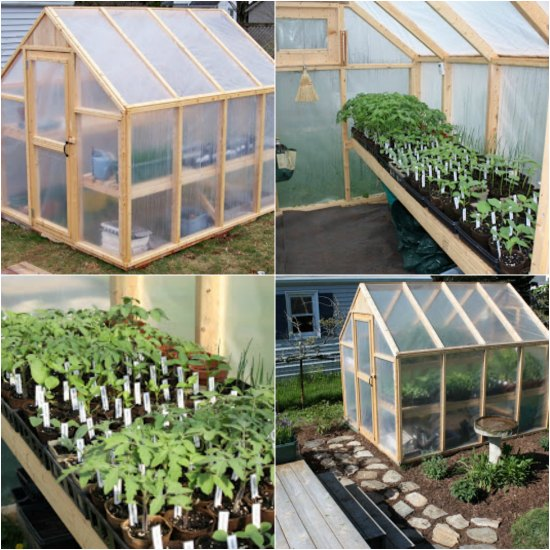 How To Build A Simple Greenhouse In Your Backyard