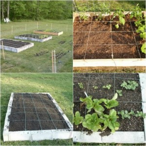 How To Build A Square Foot Garden In 10 Easy Steps