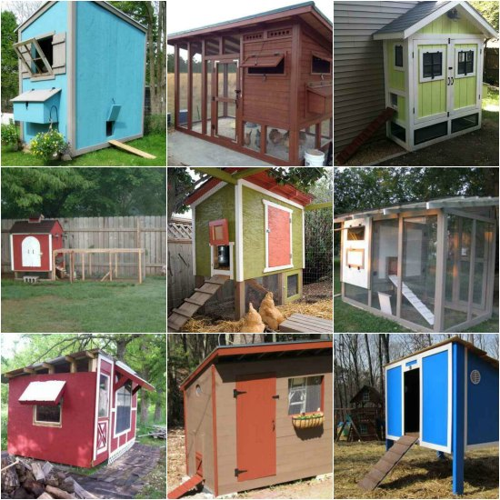 18 incredible diy chicken coop designs and ideas - Chicken Coop Design Ideas