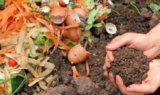indoor-composting