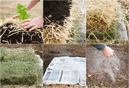 no-dig-garden-bed