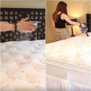 The Best Ways To Clean Your Mattress