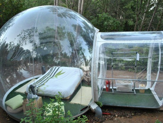 This clear bubble tent is just one of many holiday gift ideas.