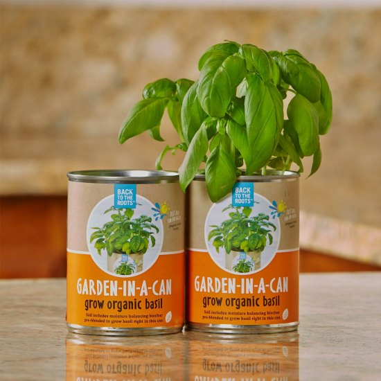 This garden in a can is one of many great holiday gift ideas.